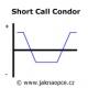 Short Call Condor